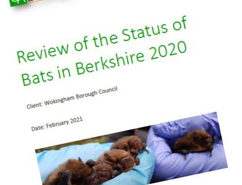 Status of bats in Berkshire