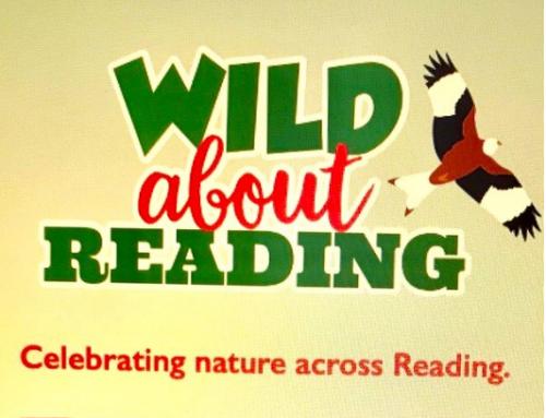 Wild about Reading bat walks & more